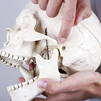 Finger pointing at model skull